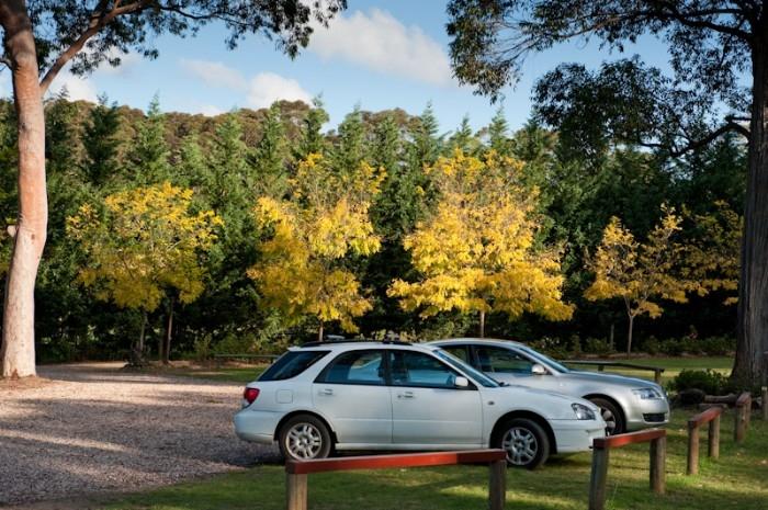 Gardens and carparking