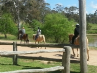 Local horseriding