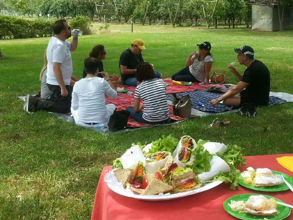 Picnics available on request